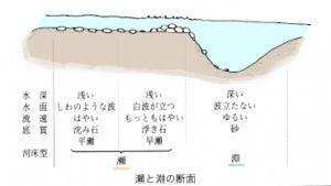 瀬と淵の構造、仕組み
