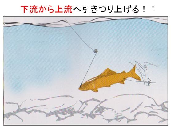 オモリ 鮎引き釣り