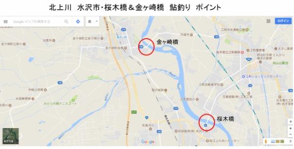 北上川 水沢市・桜木橋&金ヶ崎橋 鮎釣りポイント