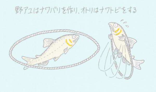 秘伝 ノンーナワトビ釣り