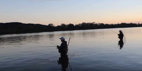 河川 シーバス釣り