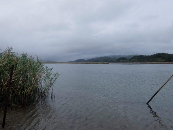 追波川 河口 中州  シーバス釣り