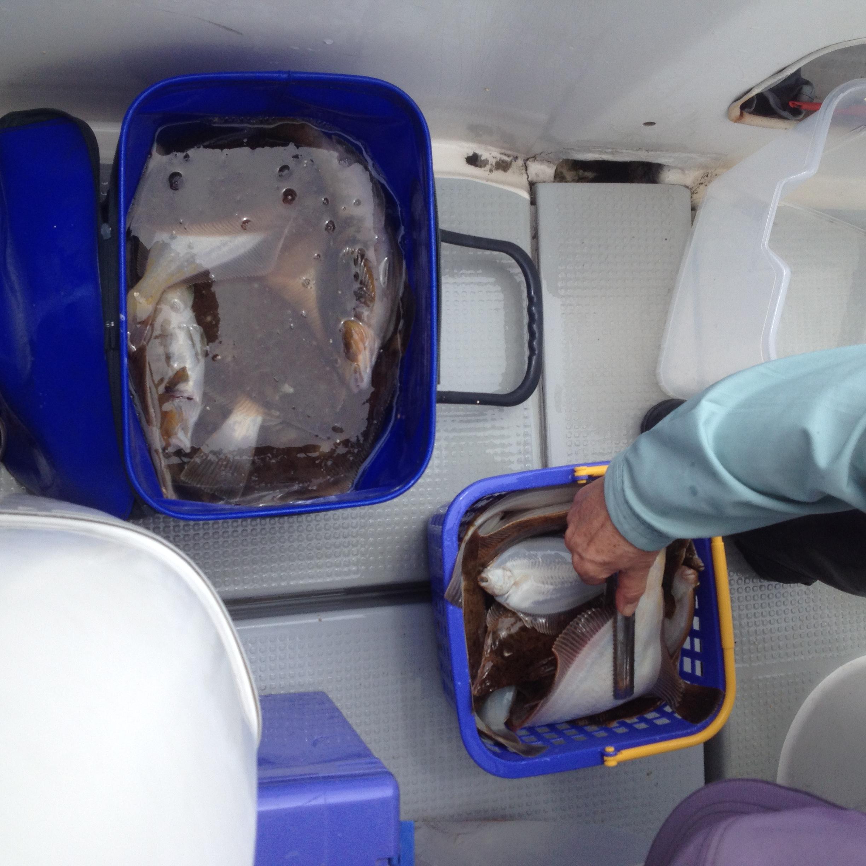 カレイ釣り 大型漁礁2