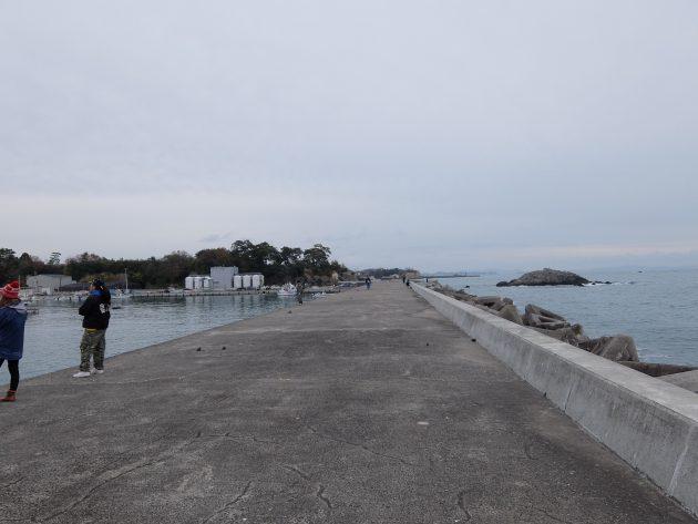 松ヶ浜漁港 ヒラメ釣り