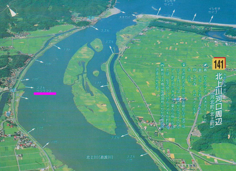 画像出典先:『宮城の海釣り』河北新報社