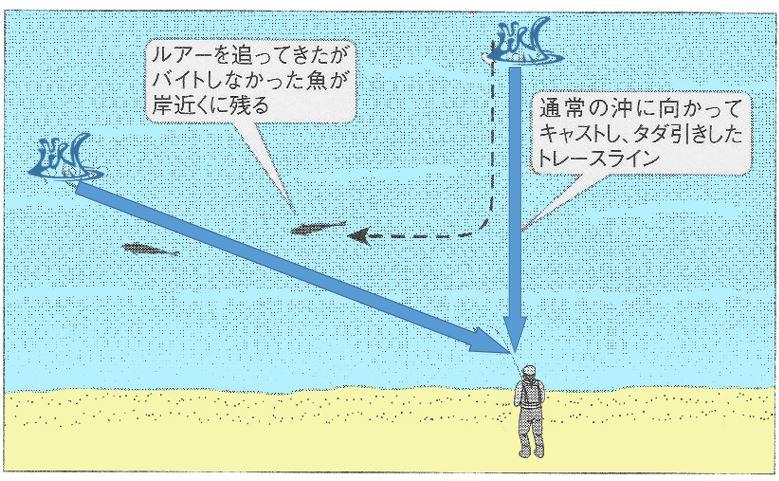 海サクラマス 波打ち際