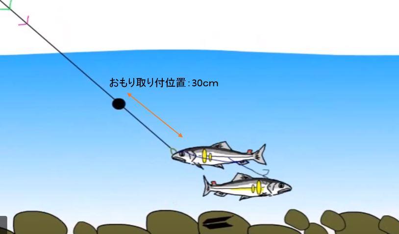 オモリ 取り付位置 鮎釣り