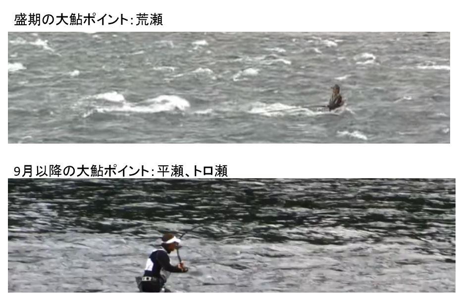 大鮎釣り ポイント