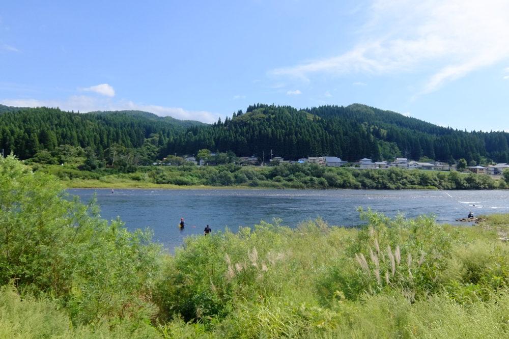 米代川 銀杏橋 鮎釣り