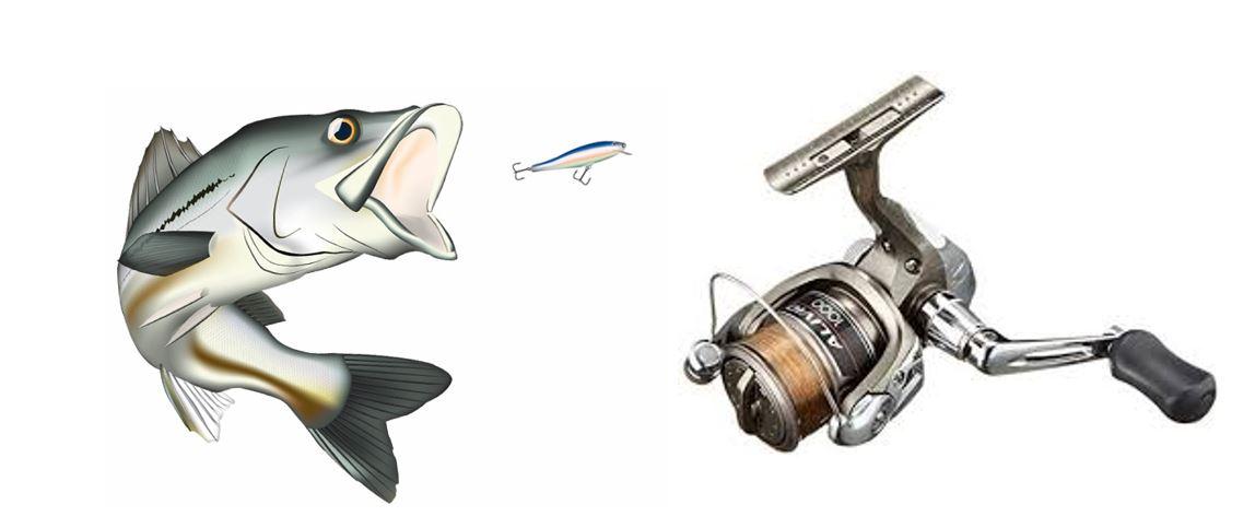 シーバス釣り用スピニングリール