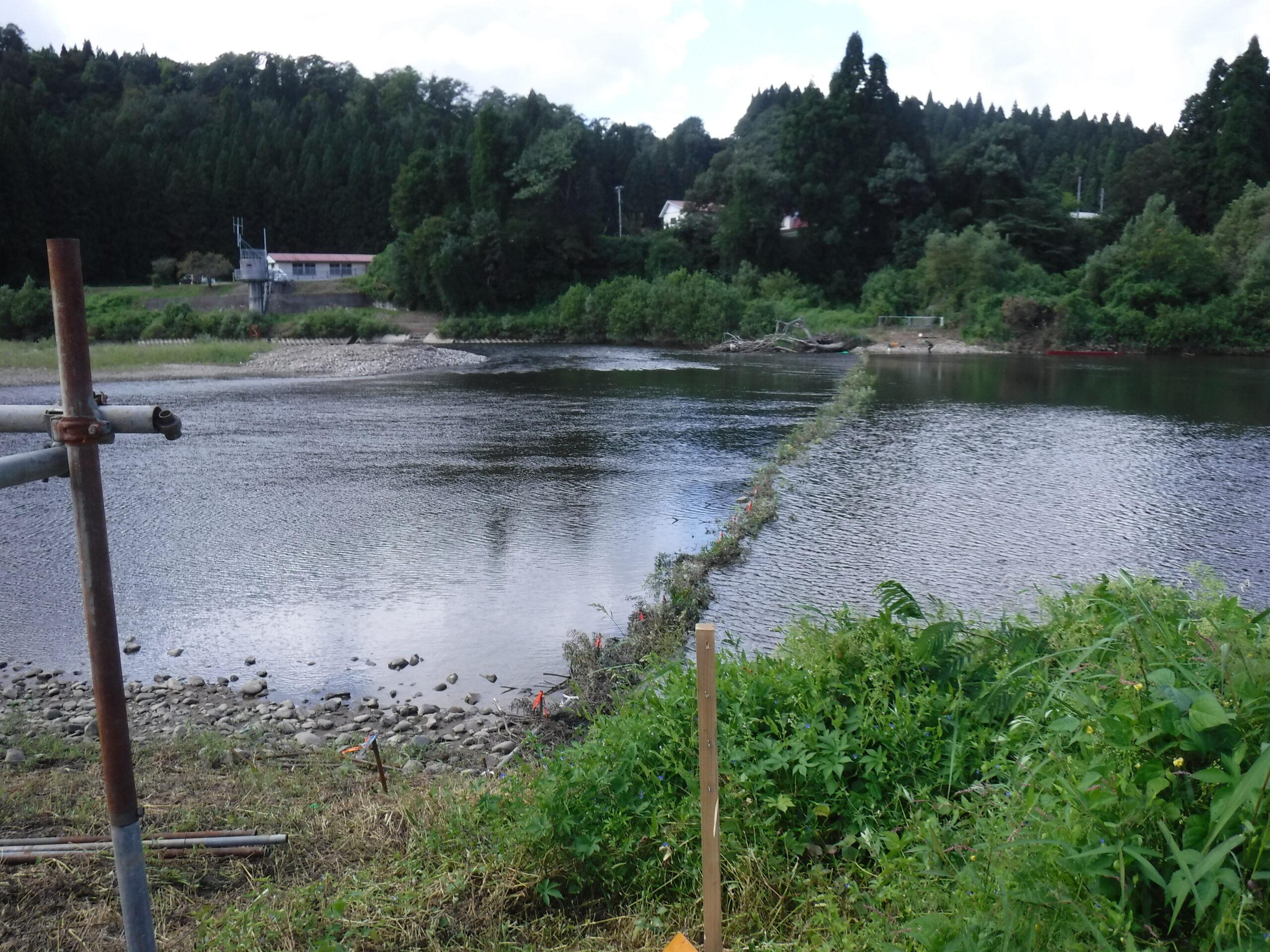 鮎釣り 鮭川、真室川 2021年9月13日