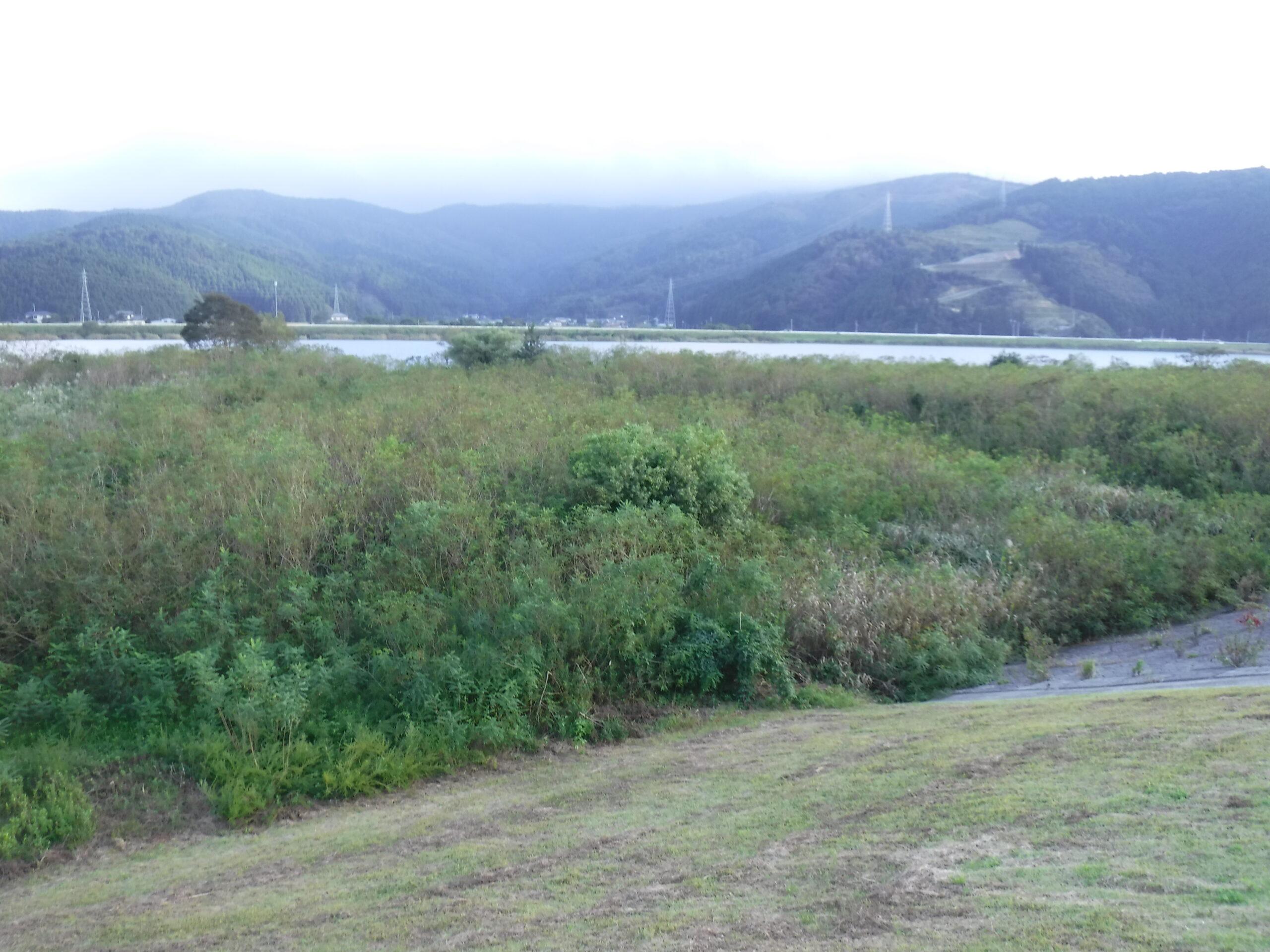 ハゼ釣り  宮城県 追波川  2021年9月22日(水)